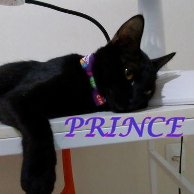 Thumb prince 0