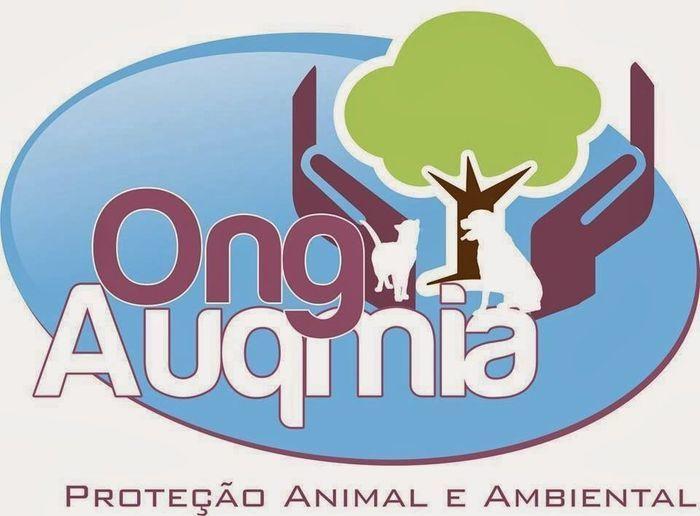 Logo auqmia